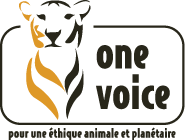 One Voice, logo,